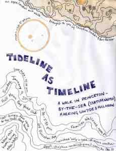 tideline as timeline poster
